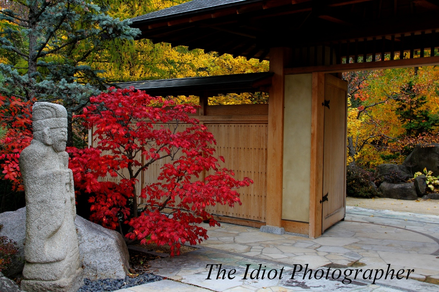 The Strolling Pond Gate: Japanese Gardens ...