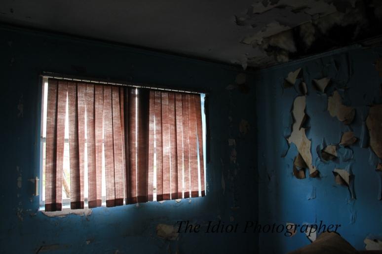 shaded windows