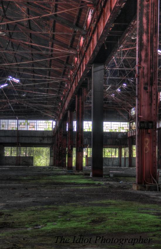 snb factory floor moss