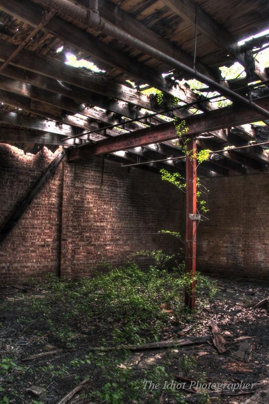 snb factory nature escapes