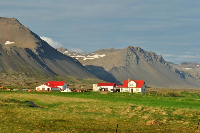 farm1.wp