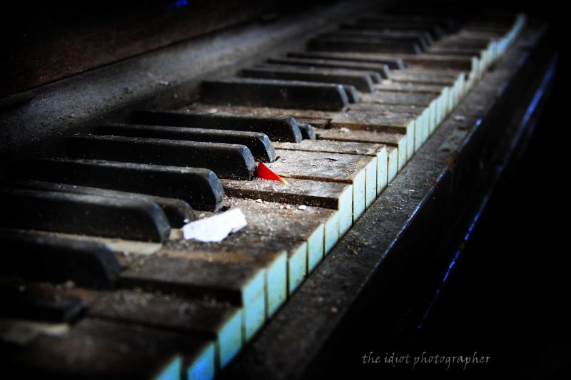 piano and petal