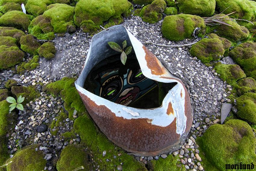 forbidden planet 2 blog