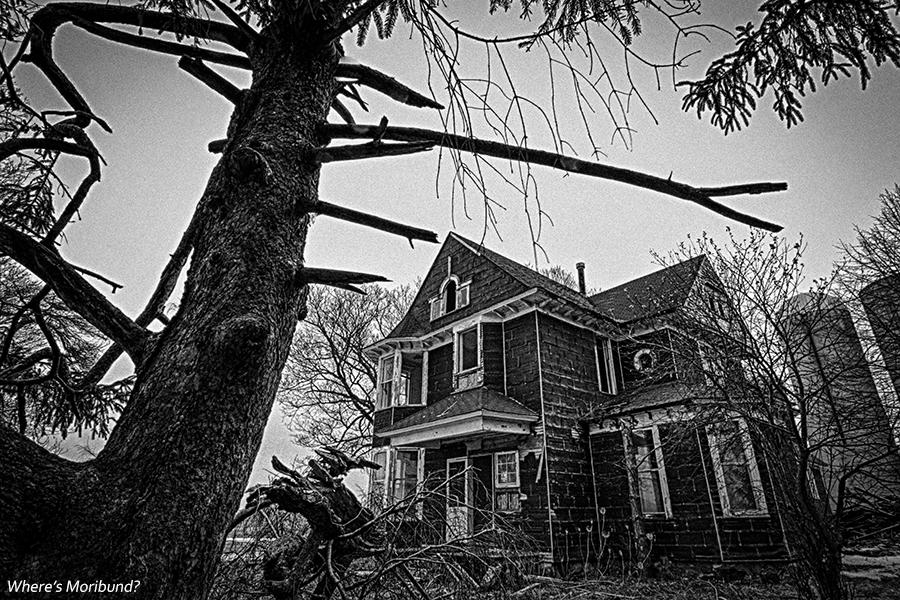 rural spookhouse 2 BLOG
